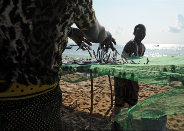 lake-malawi-dwindling-fish-stocks5