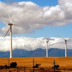 Blooming renewables in South Africa