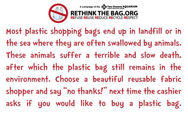 rethink the bag (2)
