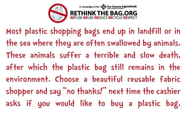 rethink the bag (2)