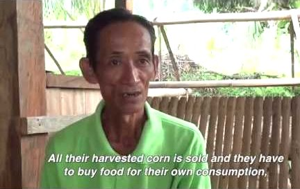 Farmers in the Philippines Deceived by GM Corn2