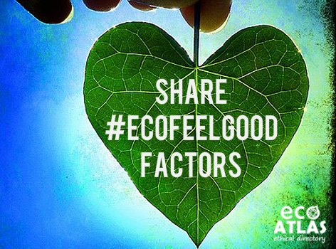 Eco Atlas South Africa campaign green products competition