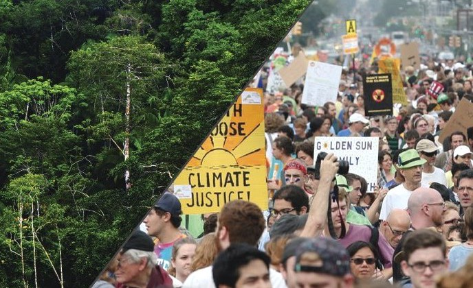 Global Catholic Climate Movement action petition