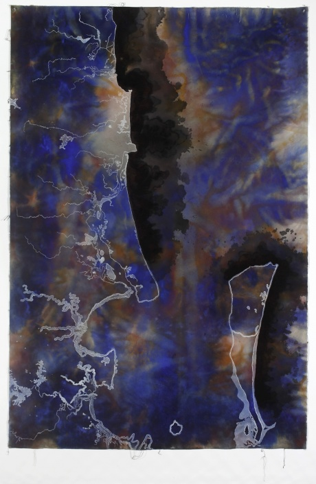 Judy Watson, Bloom 2009 pigment,