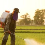 WHO admits Monsanto's glyphosate 'probably' causes cancer