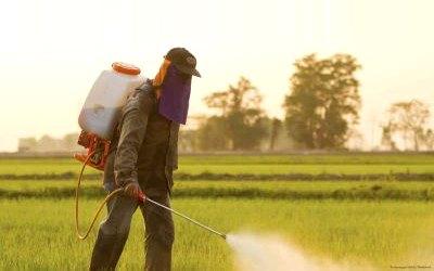 SprayingMonsantoRoundupGlyphosate