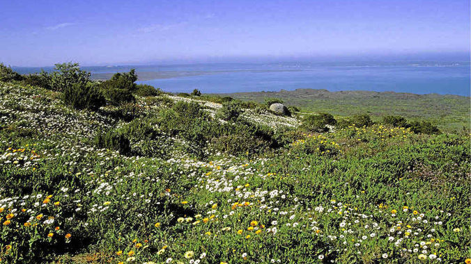 West Coast National Park biosphere reserve mining controversy