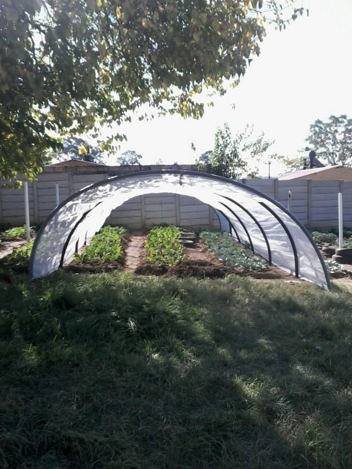 Vegetable tunnel