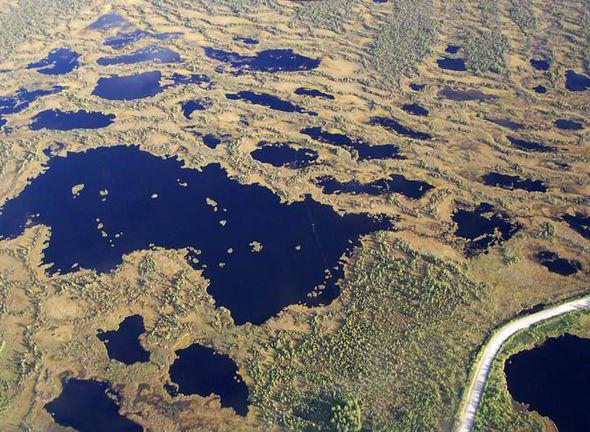 climate-change-marshland-siberia-greenhouse-gases