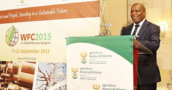 Agriculture Forestry Fisheries Minister Senzeni Zokwana XIV World Forestry Congress
