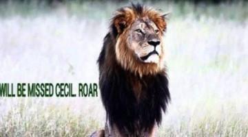 cecil roar zimbabwe national park death