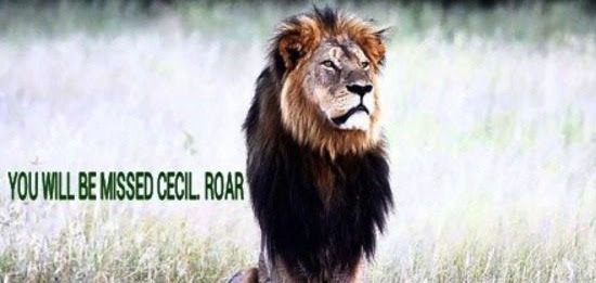 cecil roar zimbabwe national park death