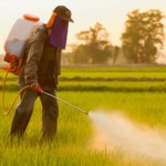 Autism study shows links to pesticides and other toxic chemicals