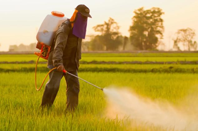 autism pesticides study research science food