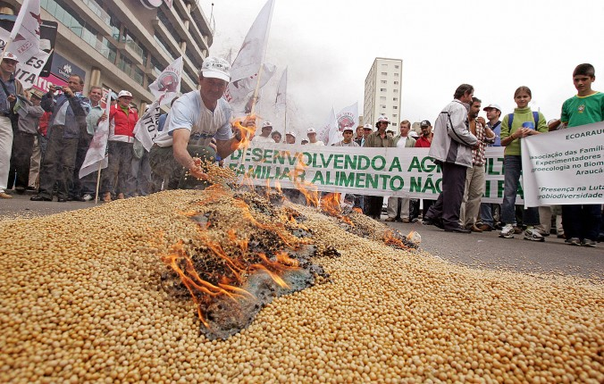 gmo-brazil-soybeans-cancer-concerns-pesticides