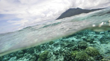 marine protected coral reef ocean acidification