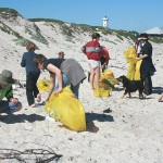 SA coastline gets thousands of loving hands-on cleaners