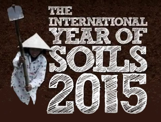 international year of soils 2015
