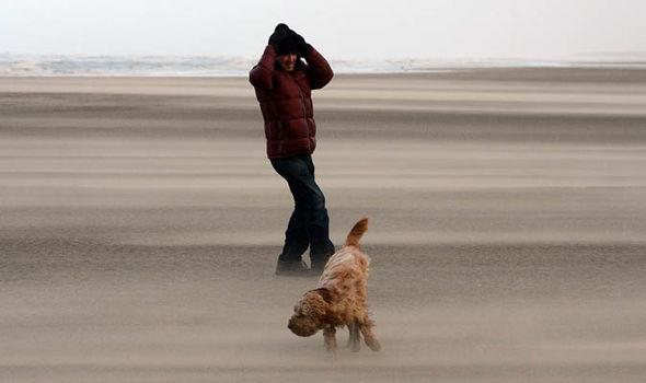 dog united kingdom christmas summer storms extreme weather2