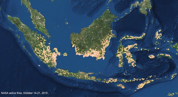 indonesia fires malaysia greenpeace palm oil deforestation2