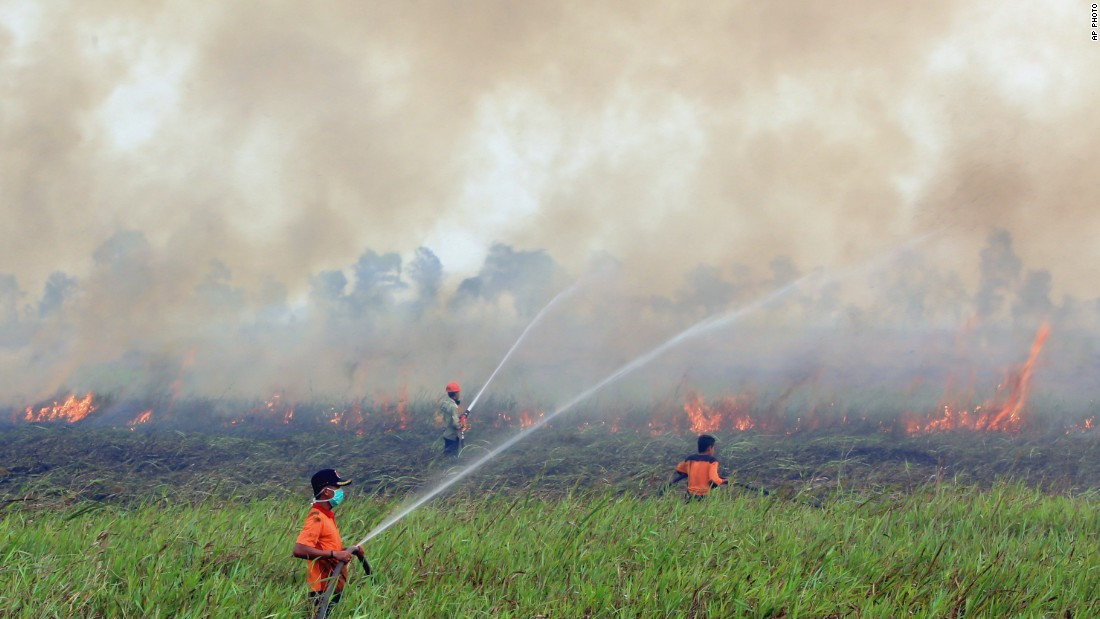 indonesia fires malaysia greenpeace palm oil deforestation6