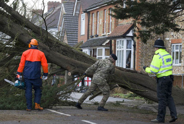 tree united kingdom christmas summer storms extreme weather