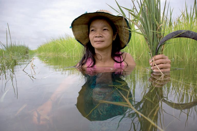asia food vulnerable people climate change