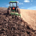 Treating soil like dirt is a fatal mistake