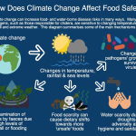 Health impacts of climate change: waterborne diseases
