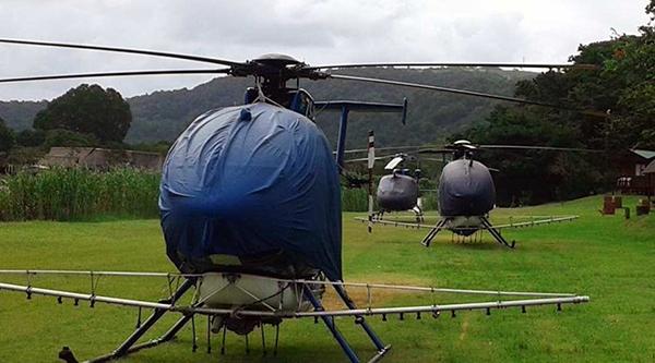 monsanto saps marijuana cannabis petition transkei helicopters
