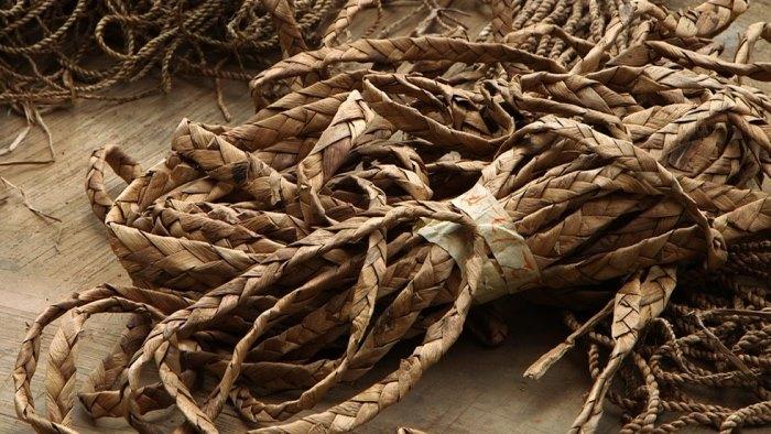 water hyacinth invasive aquatic weed nigeria entrepreneur4