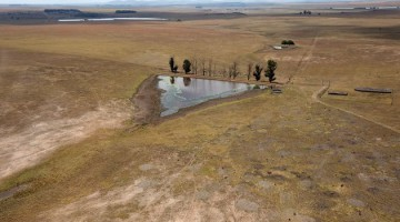 Western Cape needs R88m to help drought-hit farmers