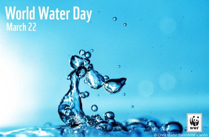 World-Water-Day-WWF-SA