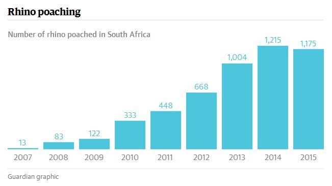 wildlife conservation rhino poaching africa record killing2