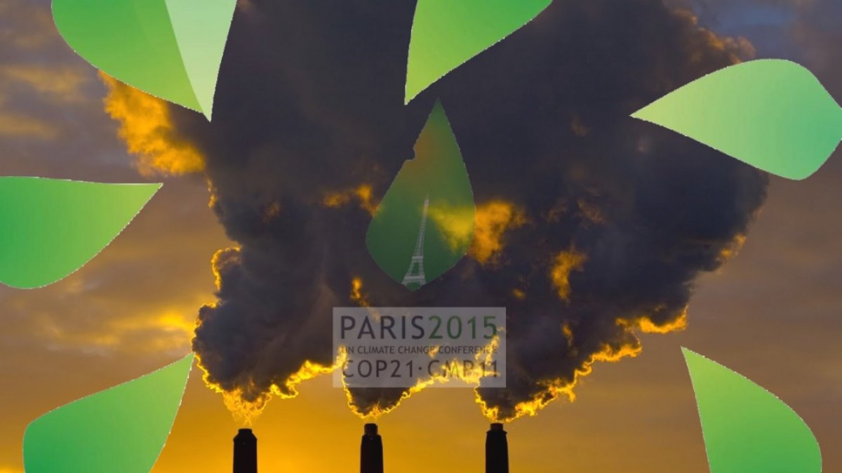climate change transition sustainability regenerative design
