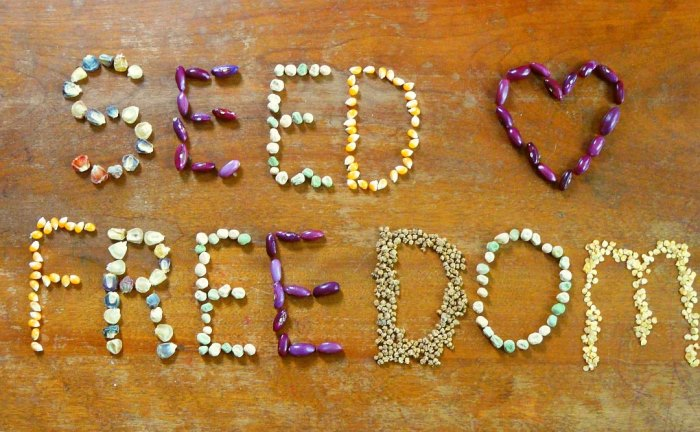 seed freedom