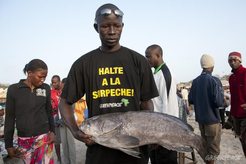 "Fish monger holds a fish and wears Greenpeace T-shirt reading in French ""stop overfishing"" at Soumbedioune fish market. Greenpeace is campaigning in West Africa for the establishment of a sustainable, low impact fisheries policy that takes into account the needs and interests of small-scale fishermen and the local communities that depend on healthy oceans."