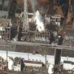 No end in sight for Fukushima's reign of marine terror