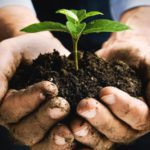 Why your life depends on healthy soil
