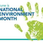 Green jobs the answer this Environment Month