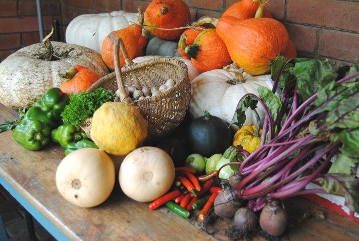 sustainable gardening composting food gardens (3)
