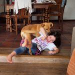 The search for a toddler-friendly floor cleaner