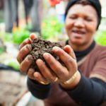 Award-winning soil documentary to have gala screening at Labia