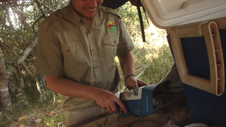 Ulovane Reserve seeks aspiring nature guides
