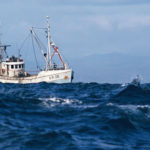 Poor management of fisheries is not a local problem