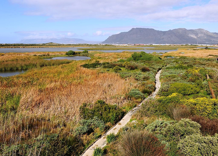 Rondevlei_Wetlands_Nature_Reserve