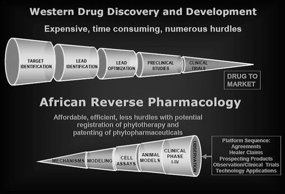 indigenous medicine natural south africa big pharma2