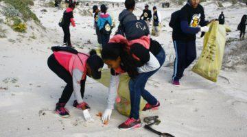 World's biggest volunteer effort for ocean health
