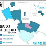 World's largest marine park created in Antarctica