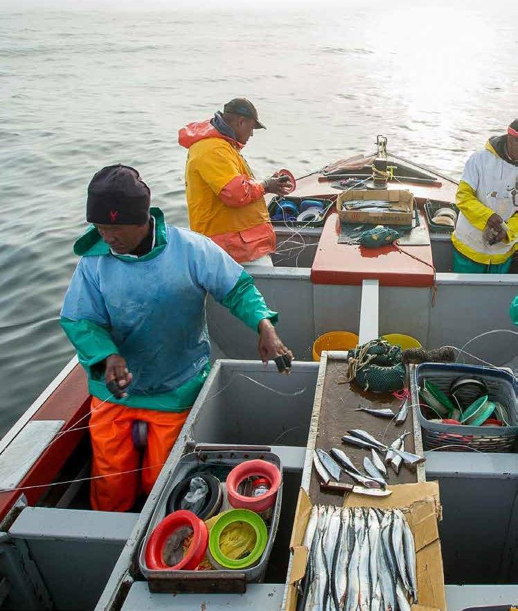 wwf_oceans_facts_futures_economy_report1